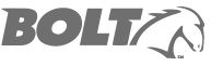 logo-bolt